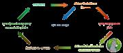 cycle-dechets-organiques